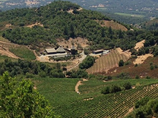 Intimate Wine Tours : View of winery in Sonoma
