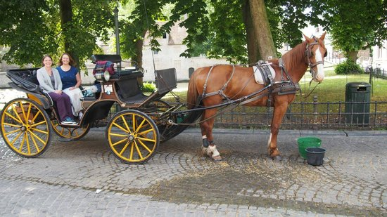 Horse Drawn Carriage Tours: Time for a photo.