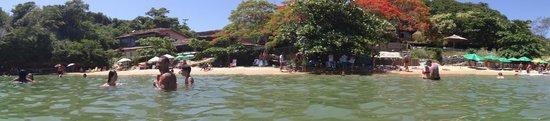 Tartaruga Beach : Vista de la playa Tartaruga