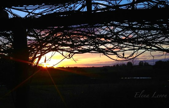 El Galope Farm & Hostel : Sunsets are spectacular!