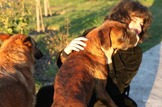 El Galope Farm & Hostel : Kira's love
