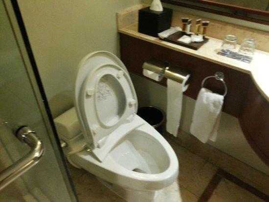Sheraton Surabaya Hotel & Towers: toilet