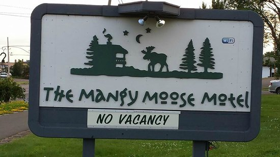 Mangy Moose Motel: A great place to stay the next time you are in Grand Marais