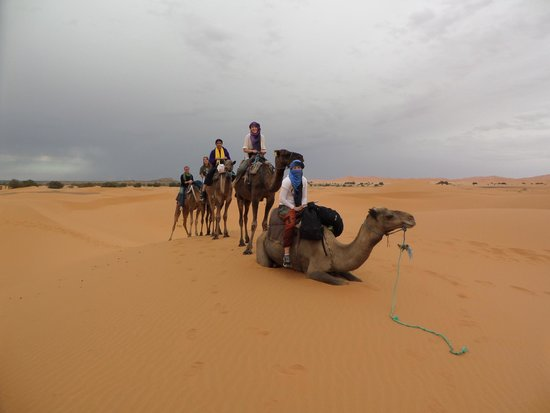 Morocco Excursions: Camel ride in the desert