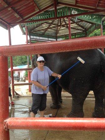 Hutsadin Elephant Foundation: shower time!