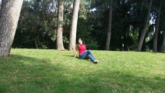 Parco Sempione: parco
