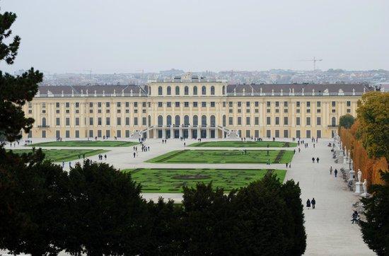 Schloss Schönbrunn: From the top of the hill