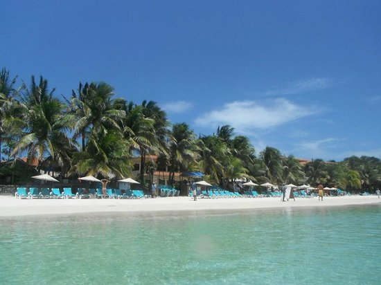 Mayan Princess Beach & Dive Resort: beach