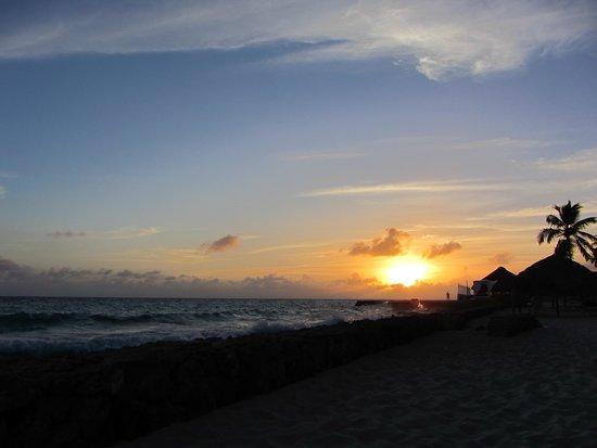 Viva Wyndham Dominicus Palace: Pôr do sol