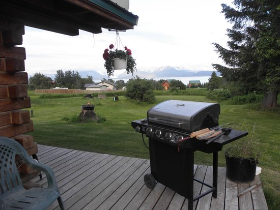 Glacier View Cabins: bbq and deck