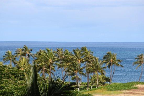 Marriott Ko Olina Beach Club: Breathtaking ocean and palm trees