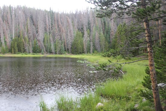 Lily Pad Lake: One of the lakes at the end of the trail.  Very quiet and serene.