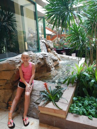 Embassy Suites by Hilton Tampa-USF/Near Busch Gardens: dear daughter enjoying the hotel!