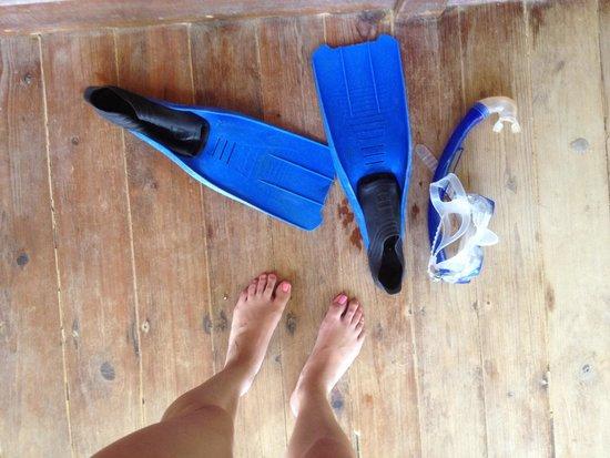 Half Moon Resort: Best place to snorkel