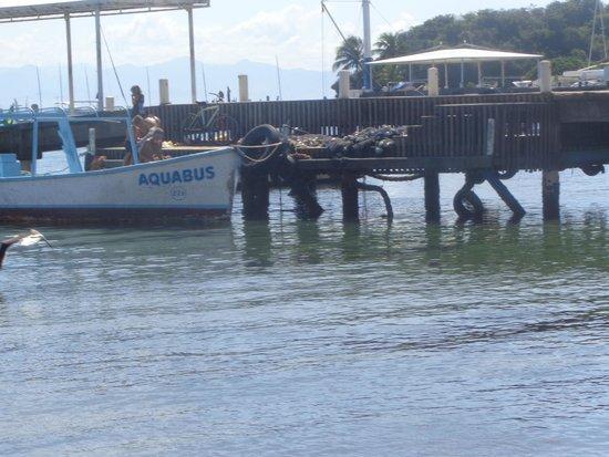 Armacao Beach : Cais dos pescadores.