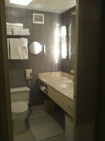 Park Lane Hotel: Large-ish Bathroom