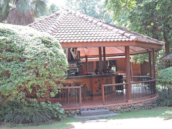 Sal Salinero Hotel : Bar