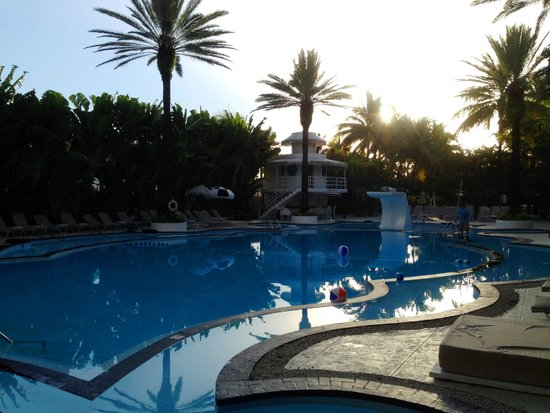The Raleigh Miami Beach : pool