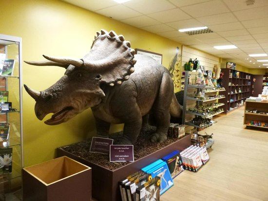 Museo de Ciencias Naturales: Loja do Museu