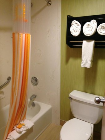 La Quinta Inn & Suites Boise Towne Square: Clean and tidy bathroom