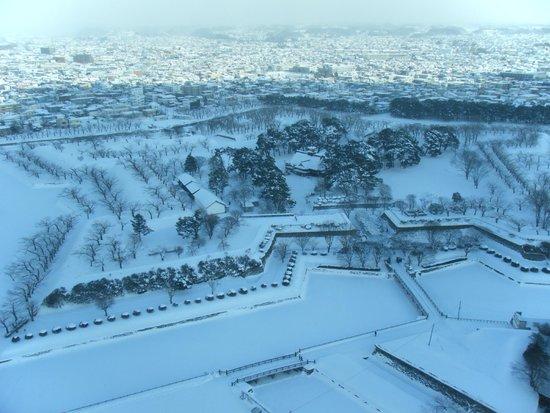 Goryokaku Tower : 上からの景色