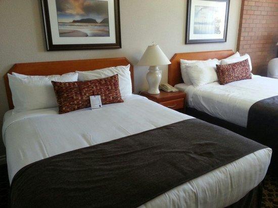 Embassy Inn : Great room
