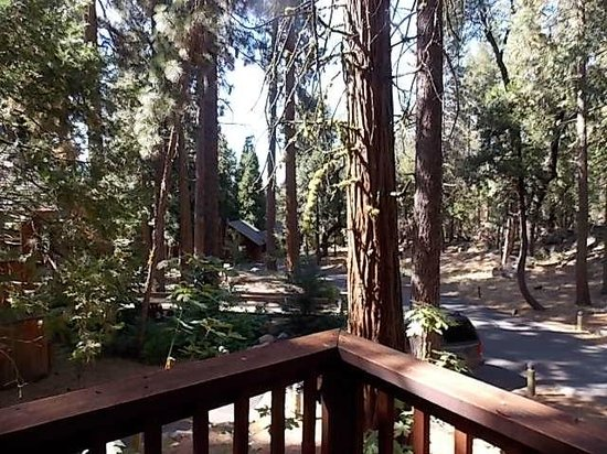 Evergreen Lodge at Yosemite : view from cabin C2 balcony