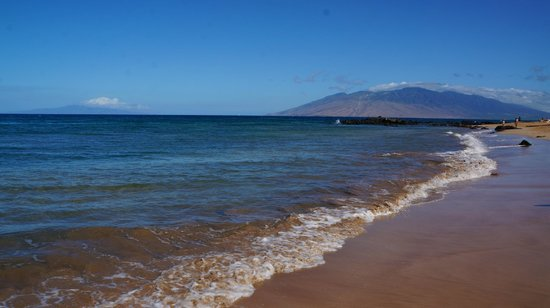Andaz Maui At Wailea : Beach