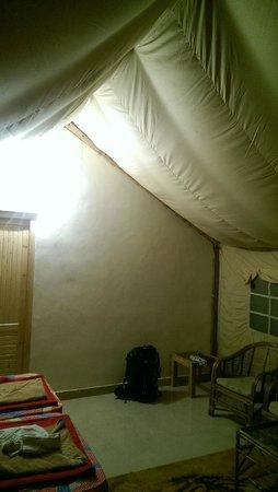 Hidden Woods: tent