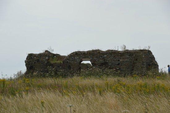 RSPB Minsmere: Minsmere Chapel Ruin