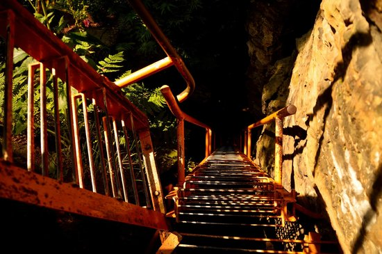 "Saxon Switzerland National Park: Ladders on one of the many ""Stiegen"""
