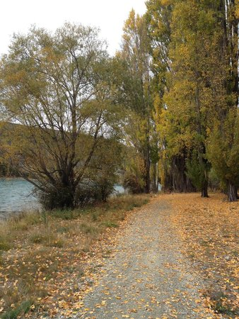 Riversong Bed & Breakfast: Walking track metres from the house