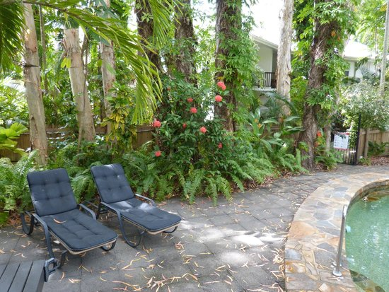 The Reef Retreat Palm Cove : Un espace de repos paradisiaque