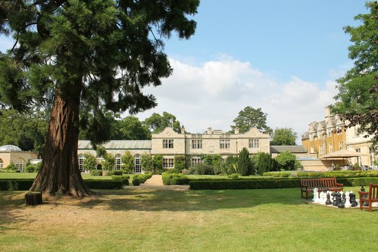 Stapleford Park: view at rear