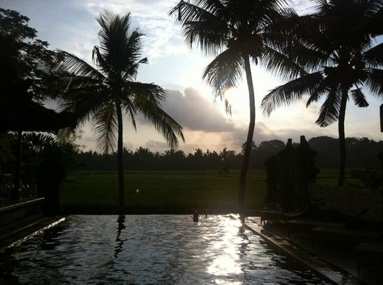 Green Field Hotel and Bungalows : Salt water pool
