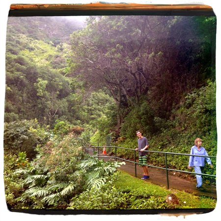 Iao Valley State Monument: Iao Valley