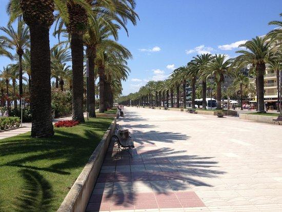 Avenida Jaume I : сама Аллея