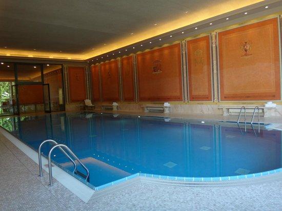 Brenners Park-Hotel & Spa : бассейн