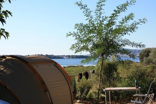 Camping Lou Labech : Vue depuis le milieu du camp