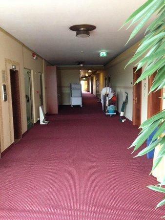 Hotel Garden Terme : corridoio al piano