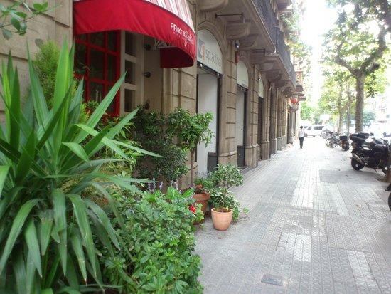 Praktik Garden: entrata hotel
