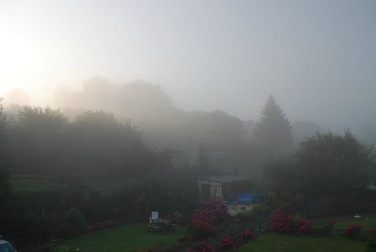 Saint Manvieu Bocage, Francja: Early mist outside La Maison.