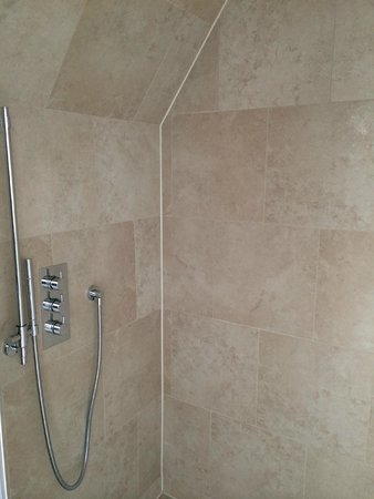 The Grand Hotel & Spa: Walk in shower