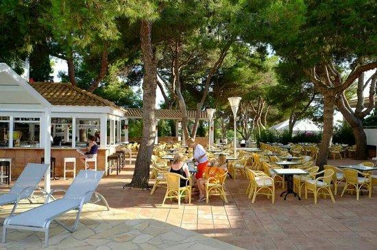 Prinsotel La Caleta: Snack bar piscina