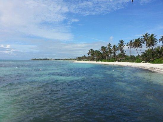 Club Med Punta Cana : plage a 1min de l'hotel coté suite