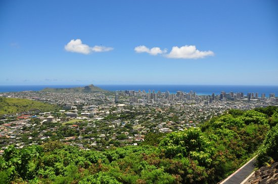 Bike Hawaii Tours: View from the downhill biking (Lunch break)