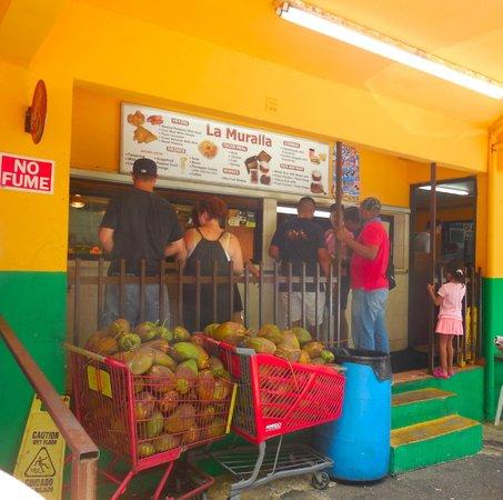 Melia Coco Beach: Yunque excursion