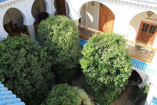 Riad Asrari: Vue depuis la terrasse