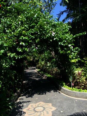 Risata Bali Resort & Spa : Garden