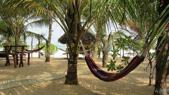 Ibis Guesthouse: Traumhafter Blick aufs Meer